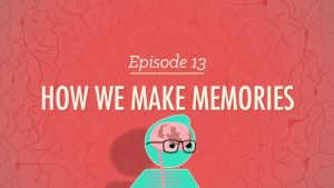 The title for the Crash Course video on how we make memories