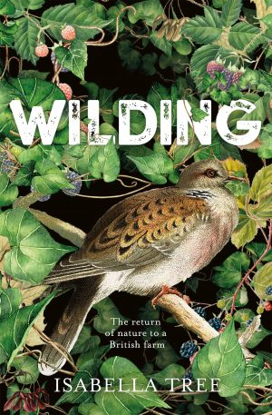The cover of the book Wilding by Isabella Tree