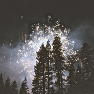 Fireworks above a line of trees - representing a New Year's resolution