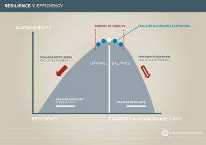 A infographic showing the balance needed between efficiency and effectiveness when dealing with the environment.
