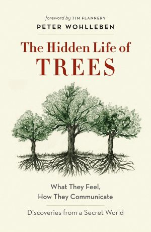 The cover of The Hidden Life of Trees by Peter Wohlleben